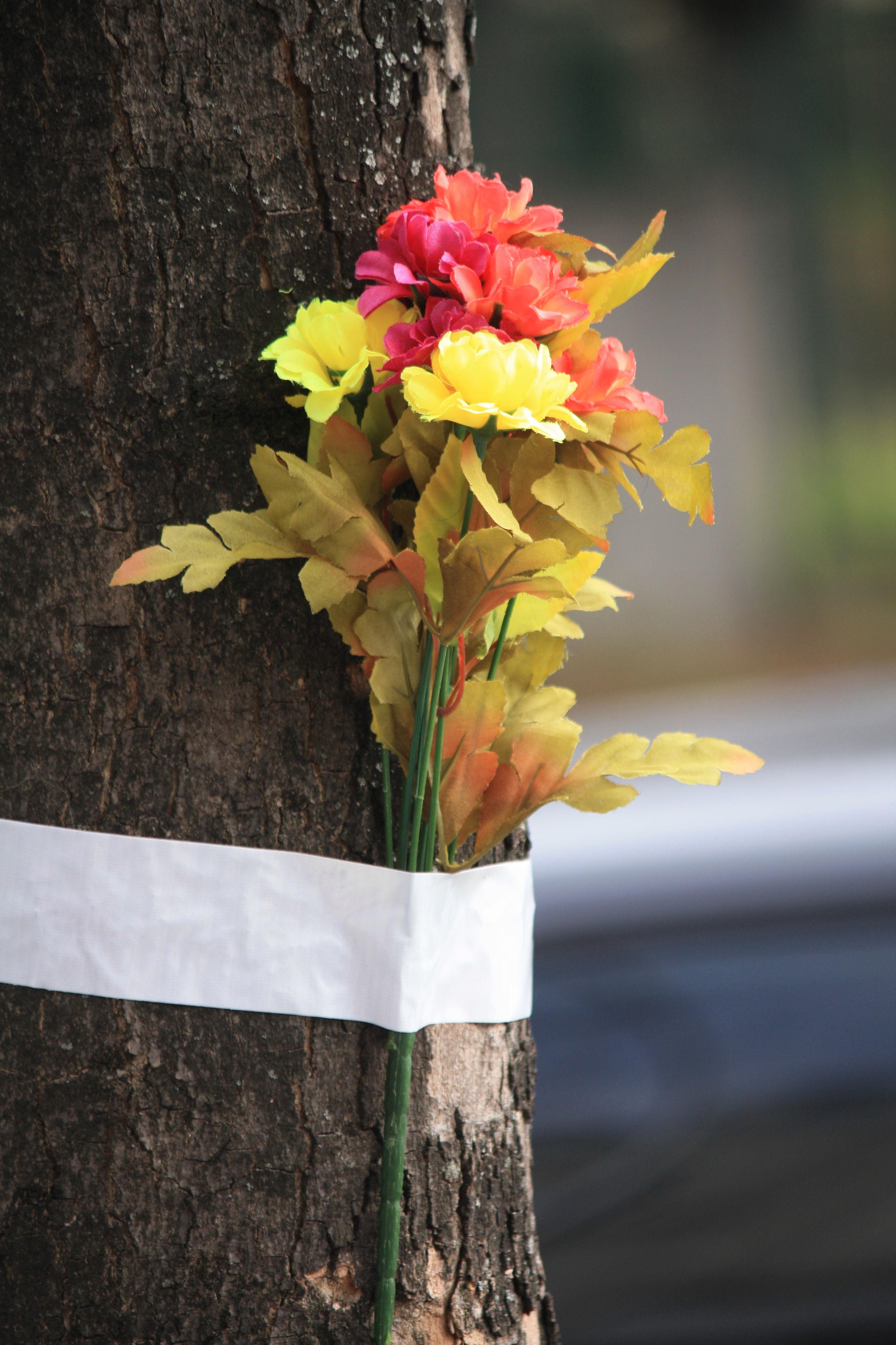floral-prevention-link